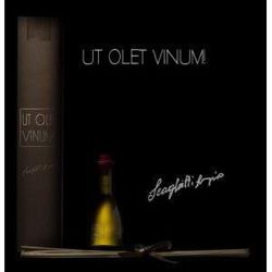 Ut Olet Vinum  Chianti perfume for interiors 250 ml